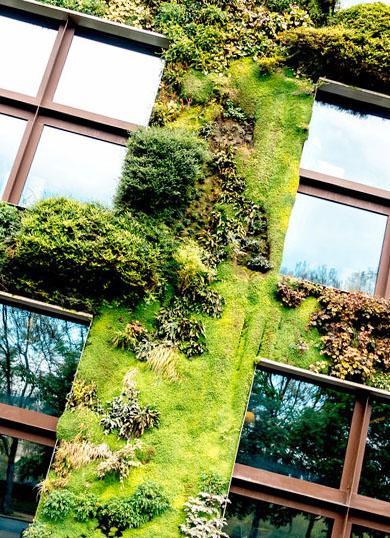 Des immeubles végétalisés, l'art de lier nature et architecture