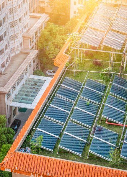 Que faire pour rendre la toiture de sa maison plus écologique ?